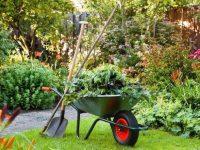 Комплектуем набор садовых инструментов