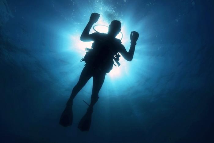 Бизнес идея: водолазное обследование
