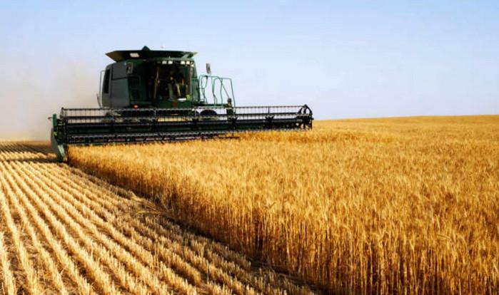 Всемирный банк выступил за снятие моратория на продажу земель в Украине