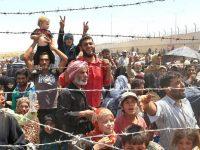 Защита от беженцев: в Шенгенской зоне намерены продлить пограничный контроль
